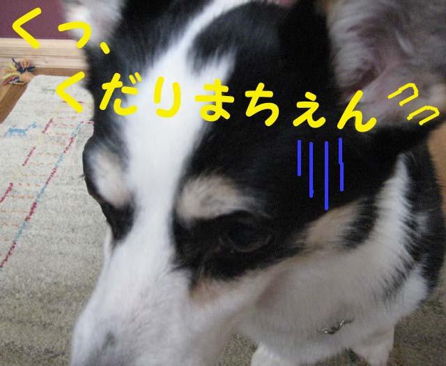 Img_03732_2