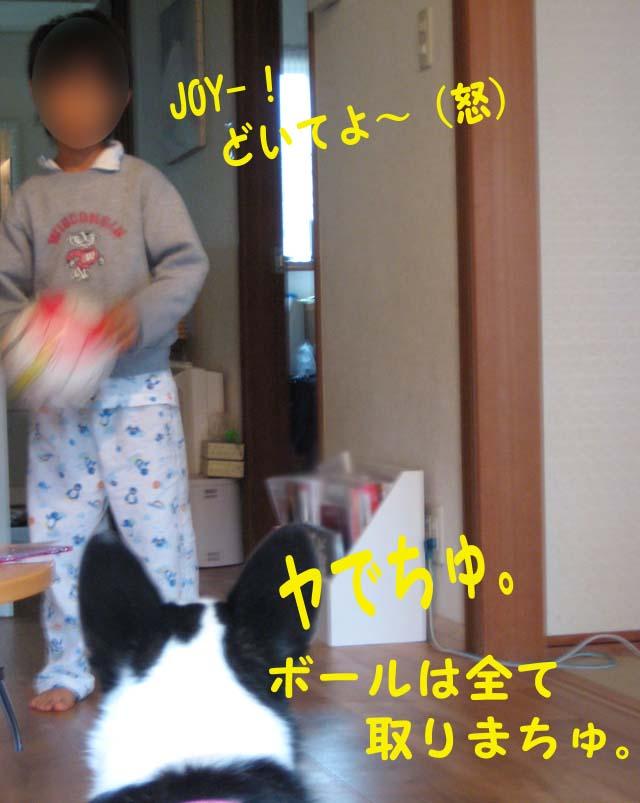 Img_06312