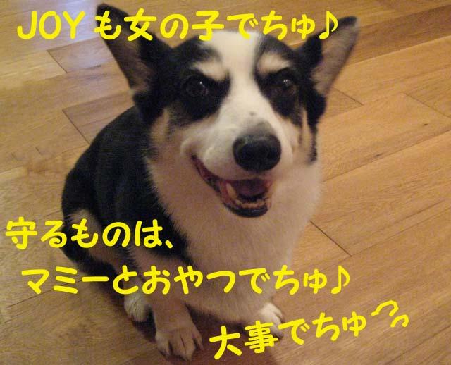 Img_07332_2