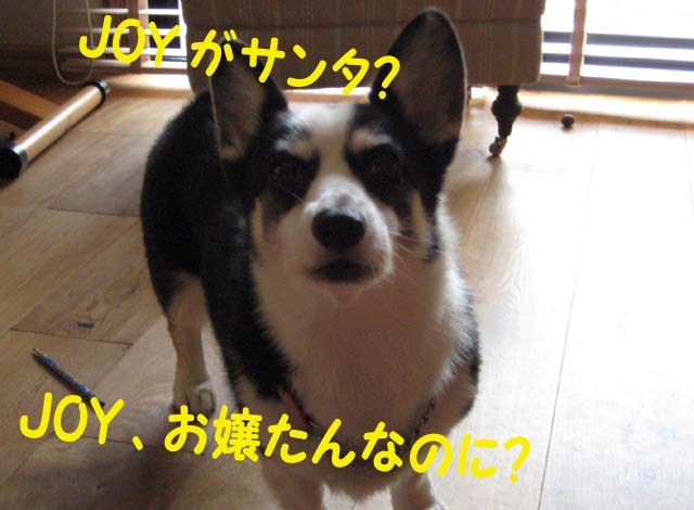 Img_05702